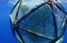Sustainable Floating Fish Farms