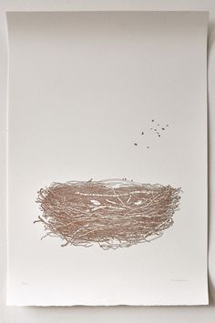Bird's Nest Drawing Limited Edition Letterpress Print by VILUONG