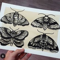 @rubenwayne made these moths and is having a give away so go check it out…