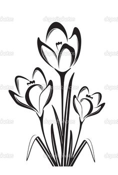 Black And White Flowers Drawings Cbru