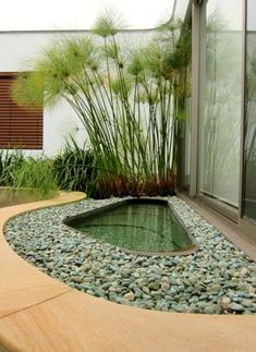 The Water Garden a bit different for landscaping #landscaping #watergarden…