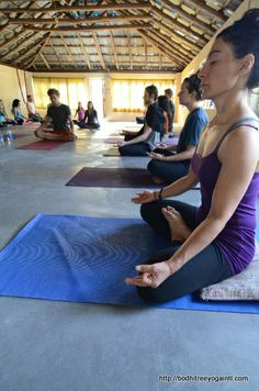 yoga teacher training in india. http://bodhitreeyogaintl.com