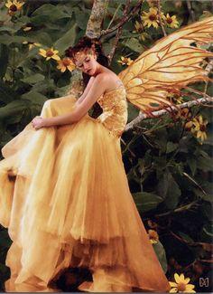 wings of fall fairy