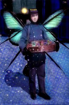 Mr. Fairy