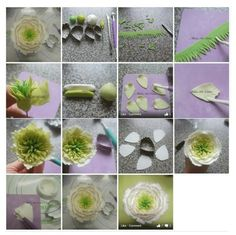 Peonie tutorial ::xlaurieclarkex~ ooh! I like the center very much - quick way to do a fondant fantasy flower