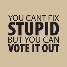 Hello Scott Brown!! Dean Heller!! Michelle Backman!!! YOU CAN'T FIX STUPID, BUT YOU CAN VOTE IT OUT T-SHIRT