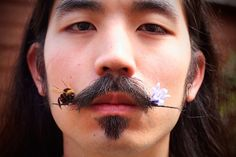 Moustache with a bee and a flower. Minimal and cool.