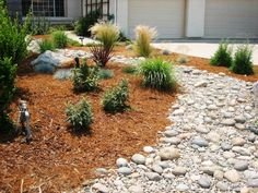 Drought tolerant front yards and yards on pinterest for Landscaping rocks sacramento