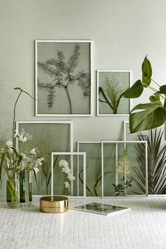 Lovely way to display greenery. Glass frames and pressed leaves.