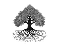 NEW Elegant Personalized Family Tree Giclee Print by StoryTree $69
