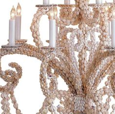 Grotto Shell Chandelier,
