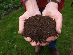 Making compost is the single best thing you can do for your garden because it adds organic matter to the soil. Composting Methods, Composting At Home, Worm Composting, How To Make Compost, Making Compost, Compost Soil, Compost Bags, Organic Fertilizer, Vegetable Gardening