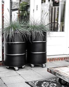 Oil drum planters to deck up your frontyard Backyard Patio, Backyard Landscaping, Deco Restaurant, Barrel Planter, Garden Projects, Garden Furniture, Garden Inspiration, The Great Outdoors, Outdoor Gardens