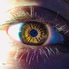 Reflection in my eye by Dávid Detkó on 500px | with Lumia 640 #Lumia #Lumia640 #Eye #Macro #ShotOnMyLumia #500px