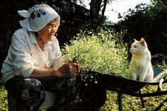 <b>Eighty-eight-year-old Misa found her odd-eyed kitty, Fukumaru, abandoned in a shed.</b> Now the two are basically inseparable.