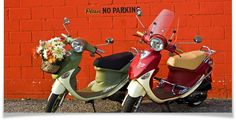 Two Buddy Scooters by Genuine Scooter