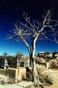Virginia City - Nevada Historical Cemetery. Really cool.  Virginua City is so charming