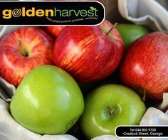 Does your mornings start with a cup of hot coffee? Bring a change in your routine and try apples. #Apples help in waking you up better than a cup of coffee. Fructose, a natural sugar found in apples is an excellent energy booster and keeps you active for the rest of the day. #TuesdayTip #GoldenHarvest