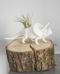 Biały Plantosaur Triceratops