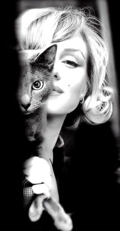 Marilyn Monroe with a Russian Blue. This picture makes me smile. That kitty is gorgeous and so is Marilyn! Crazy Cat Lady, Crazy Cats, Classic Hollywood, Old Hollywood, Hollywood Actresses, Hollywood Glamour, Russian Blue, Marylin Monroe, Marilyn Monroe Style
