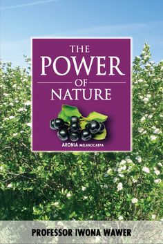 "ORDER NOW AND  RECEIVE A 20% DISCOUNT! The foremost authority on Aronia, Author and Professor Dr. Iwona Wawer, has spent the majority of her life learning, teaching and discovering the Aroniaberry. This full color book is the first complete guide to ""all things Aronia"".  From the early history of Aronia in North America, to why we need Antioxidants in our diets, you will find scientific studies, charts and gorgeous photos of the Aronia plants, berries and plantations. Price: $23.96"