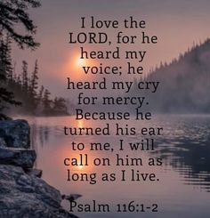 Christian: Joy in the Lord; Faith In Christ Jesus; Love God and Love My Neighbor--yes You are my Neighbor Biblical Quotes, Religious Quotes, Bible Verses Quotes, Spiritual Quotes, Faith Quotes, Psalms Quotes, Bible Psalms, Prayer Scriptures, Faith Prayer