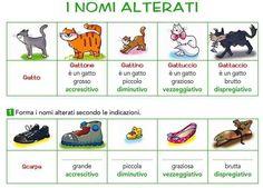 """288 Likes, 9 Comments - Impariamo l'italiano (@impariamoitaliano) on Instagram: """"I nomi alterati #learnitalian #learningitalian #studyitalian #italianlanguage #italianteacher…"""""""
