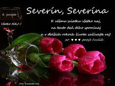 8. 1. - meniny oslavujú Severín, Severína ♥ K vášmu sviatku všetko naj-,  na tento deň dlho spomínaj a v ďalších rokoch života zažívajte raj! :) ♥