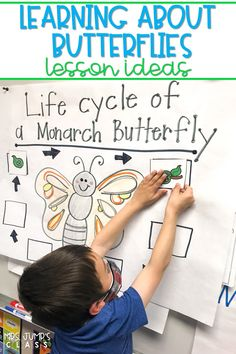 Butterfly lesson plans. Students respond to literature using the story, The Very Impatient Caterpillar and also learn about the butterfly life cycle and migration using nonfiction text.