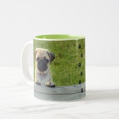 Pug Pup Two-Tone Coffee Mug - dog puppy dogs doggy pup hound love pet best friend Cute Puppies, Dogs And Puppies, Cute Dogs, Pet Photographer, Love Pet, Cool Pets, Photo Mugs, Pugs, Create Your Own