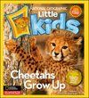 I'm learning all about National Geographic Little Kids 3-6 at @Influenster!