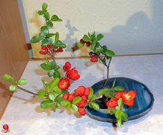https://www.facebook.com/Ikebana-International-Montreal-852683954845979/ Miniature flower arrangement Welcome Swallows - 2012 Exhibition - Ikebana International of Montreal SC20120421 007