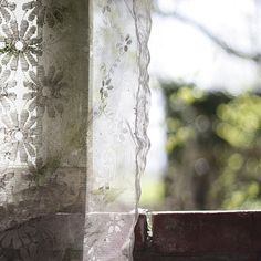 old lace curtain in a window.Flies on the Butter Window View, Open Window, Lace Curtains, Through The Window, Linens And Lace, Country Life, Country Living, Country Charm, Country Farmhouse