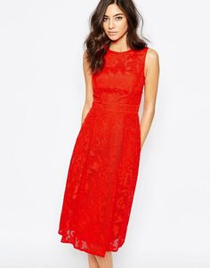 Image 1 of Warehouse Applique Lace Midi Dress