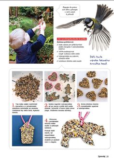 Discover recipes, home ideas, style inspiration and other ideas to try. Beading For Kids, Bird Feeders, Diy And Crafts, Life Hacks, Birds, School, Children, Winter, Christmas