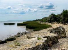 Ancient Meotia (Azov Sea coast)