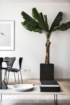 Oscar Properties | Beautiful Styling by Annaleena
