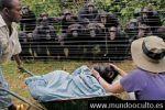 Pruebas de que los animales tienen alma.