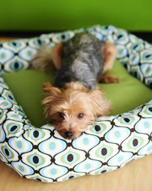 Quick-Stitch Dog Bed:  A pillow form or upcycled piece of foam and an easy-to-make polyfill tube combine into a cozy pet bed.