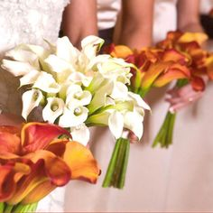 Wedding Flowers  - white and orange. I like these colors, don't need these flowers specifically though.
