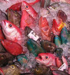 Fish market- Okinawa in Japan