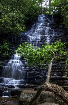 benton falls tennessee - Google Search