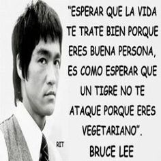 Image in Frases-Phrases collection by Bruce Lee Frases, Bruce Lee Quotes, Me Quotes, Motivational Quotes, Inspirational Phrases, Spanish Quotes, Sentences, Quote Of The Day, Wise Words