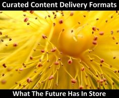 Curated Content Delivery Formats: Beyond News Portals and Magazines   Link: http://www.masternewmedia.org/curated-content-delivery-formats-beyond-news-portals-and-magazines/