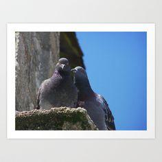 Pigeons in Love Art Print by Rainer Steinke - $22.88 dove pigeon love taube liebe täubchen