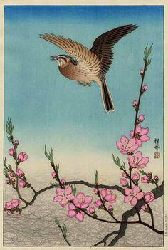 "Lark & Peach Blossoms | Tattoo Ideas & Inspiration - Japanese Art | Ohara Koson - ""Skylark and Peach Blossoms"", 1931"