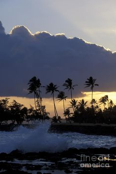 ✯ Palms of Poipu - Hawaii