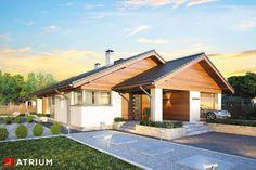 Projekty domów - Projekt domu parterowego PLISZKA - wizualizacja 1