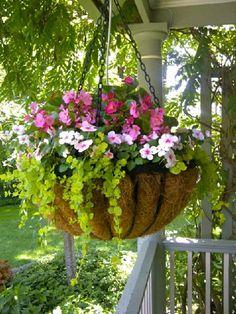 Stunning Summer Planter Ideas (21)