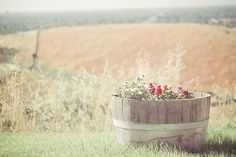 Joy Of Flowers by JoyHey, via Flickr